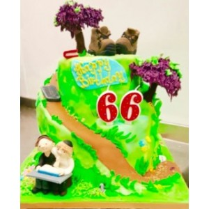 Create Bespoke Novelty Cake